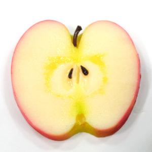 リンゴのコースター