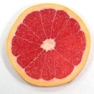 グレープフルーツ(ルビー)のコースター