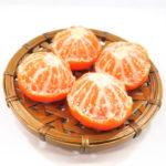 まるごとみかんの食品サンプルアクセサリー
