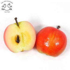 半分リンゴの食品サンプル