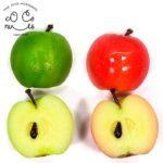 半分りんごの食品サンプル