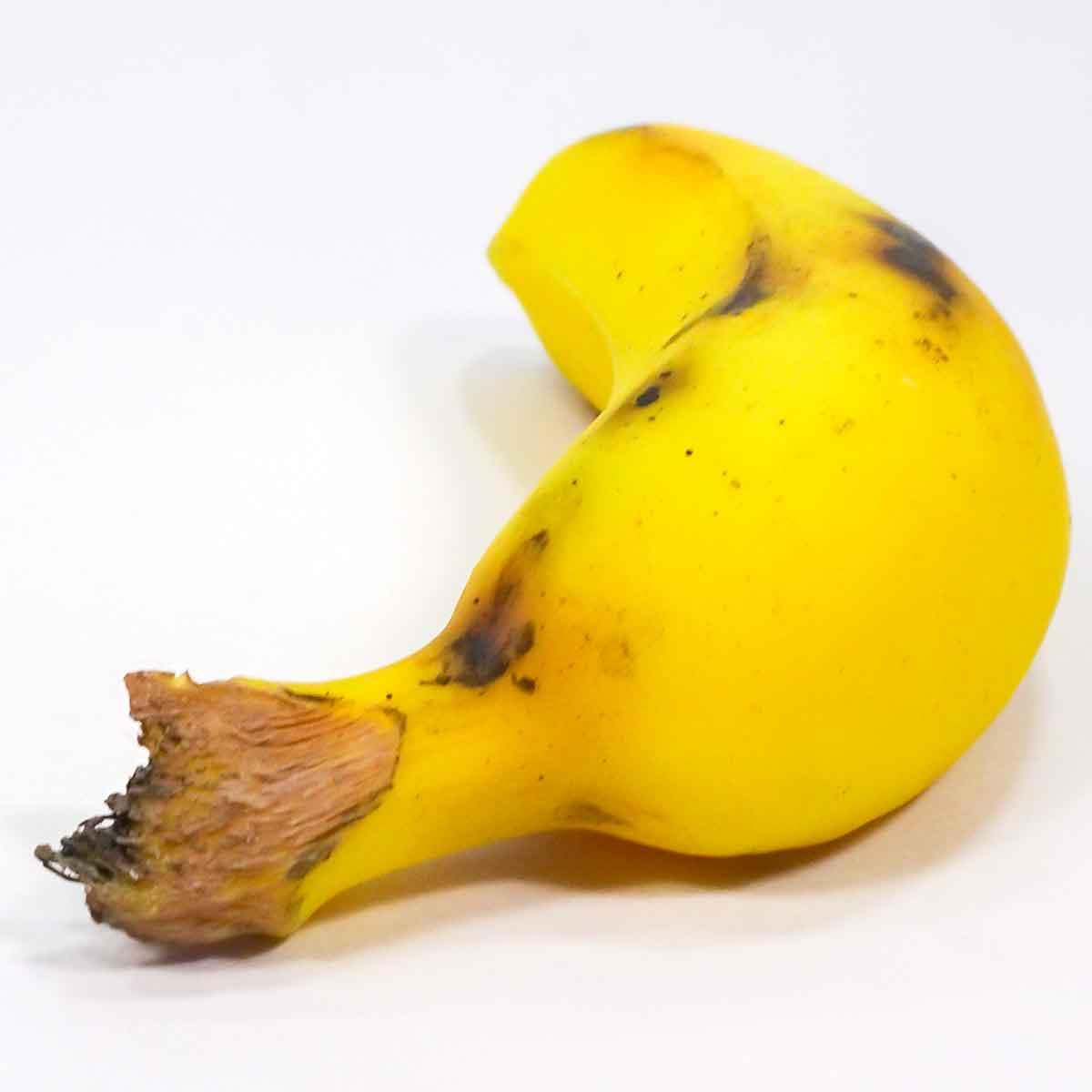 モンキーバナナの食品サンプル
