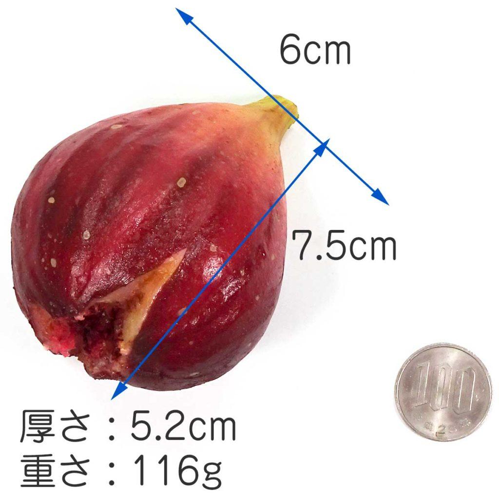 大きさ 7.5cm×6cm×5.2cm 重さ 役116g