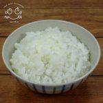 ご飯(白飯)の食品サンプル