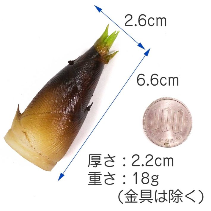 大きさ 6.6cm×2.6cm×2.32cm 重さ18g(金具を除く)